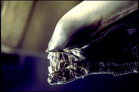 1979_alien_014